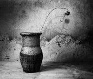 Aún-vida blanco y negro con un jarro viejo Fotografía de archivo