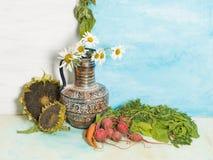 Aún vida brillante con las verduras Foto de archivo libre de regalías