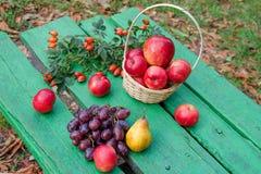 Aún vida brillante de la fruta Imagen de archivo libre de regalías