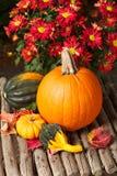 Aún vida colorida de la calabaza y de las flores Fotografía de archivo libre de regalías