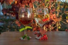 Aún-vida con dos vidrios de vino, de hojas de otoño y de bayas Imagen de archivo libre de regalías