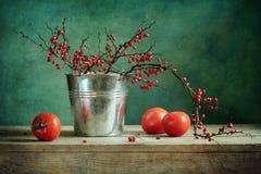 Aún-vida con el bérbero y el tomate Foto de archivo
