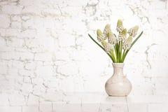 Aún-vida con el ramo de jacintos de uva blanca florecientes en un florero blanco Fotos de archivo libres de regalías