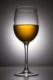 Aún-vida con el vidrio de vino Foto de archivo libre de regalías