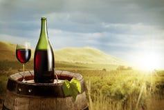 Aún-vida con el vidrio del vino y de la botella Fotos de archivo