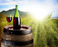 Aún-vida con el vidrio del vino y de la botella Foto de archivo