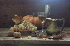 Aún-vida con el vino, las nueces y las uvas Fotos de archivo libres de regalías