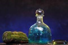 Aún-vida con la botella y el musgo viejos Concepto de la ecología Fotos de archivo libres de regalías