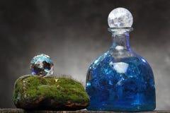 Aún-vida con la botella y el musgo viejos Concepto de la ecología Imagenes de archivo