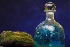 Aún-vida con la botella y el musgo viejos Concepto de la ecología Fotos de archivo