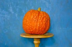 Aún-vida con la calabaza anaranjada Imagen de archivo
