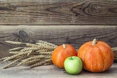 Aún-vida con la calabaza anaranjada, la manzana verde y los oídos del trigo encendido Fotografía de archivo libre de regalías