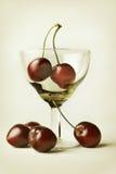 Aún-vida con la cereza y la copa Imagen de archivo libre de regalías