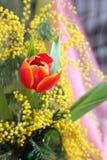 Aún-vida con la mimosa amarilla de los tulipanes rojos Imagenes de archivo