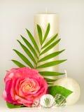 Aún-vida con la vela y las rosas blancas Fotografía de archivo libre de regalías