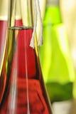 Aún-vida con las botellas de vino Fotografía de archivo libre de regalías