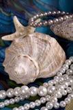 Aún-vida con las conchas de berberecho y las perlas Foto de archivo libre de regalías