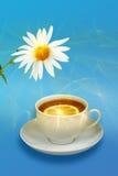 Aún-vida con las flores del limón-té y blancas Imagen de archivo libre de regalías