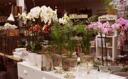 Aún-vida con las flores en floreros, decoración escandinava del hogar del estilo Fotografía de archivo libre de regalías
