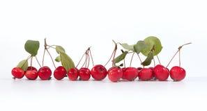 Aún-vida con las pequeñas manzanas rojas frescas Imagen de archivo