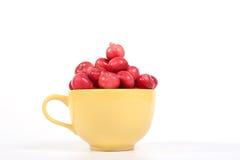 Aún-vida con las pequeñas manzanas rojas frescas Fotografía de archivo libre de regalías