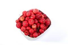 Aún-vida con las pequeñas manzanas rojas frescas Imagen de archivo libre de regalías