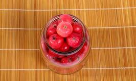 Aún-vida con las pequeñas manzanas rojas frescas Foto de archivo libre de regalías
