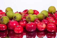 Aún-vida con las pequeñas manzanas rojas frescas, el serbal rojo y las peras verdes Foto de archivo