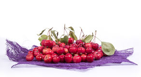 Aún-vida con las pequeñas manzanas rojas frescas, en el fondo blanco Fotos de archivo