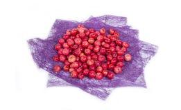 Aún-vida con las pequeñas manzanas rojas frescas, en el fondo blanco Fotos de archivo libres de regalías