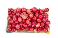 Aún-vida con las pequeñas manzanas rojas frescas, en el fondo blanco Fotografía de archivo libre de regalías