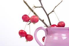 Aún-vida con las pequeñas manzanas rojas frescas en un florero coloreado, en el fondo blanco Imagen de archivo