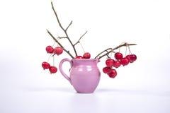 Aún-vida con las pequeñas manzanas rojas frescas en un florero coloreado, en el fondo blanco Fotos de archivo