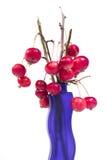 Aún-vida con las pequeñas manzanas rojas frescas en un florero coloreado, en el fondo blanco Fotos de archivo libres de regalías
