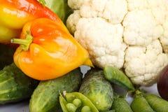 Aún-vida con las verduras frescas Fotografía de archivo libre de regalías