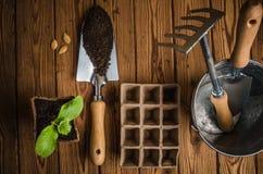 Aún-vida con los brotes y el utensilio de jardinería Fotos de archivo