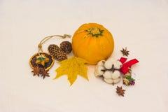 Aún-vida con los conos anaranjados del calabacín y la hoja de arce amarilla Foto de archivo libre de regalías
