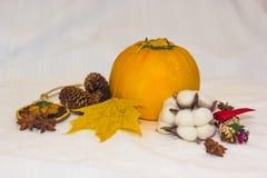 Aún-vida con los conos anaranjados del calabacín y la hoja de arce amarilla Imagenes de archivo