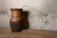 Aún-vida con un jarro viejo contra la pared Fotos de archivo libres de regalías