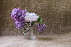 Aún-vida con un ramo de lilas Fondo con el lugar para i Imagen de archivo