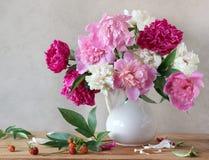 Aún-vida con un ramo de peonías rosadas y amarillas Fotos de archivo libres de regalías