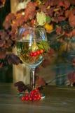 Aún-vida con un vidrio de vino, de hojas de otoño y de bayas Imágenes de archivo libres de regalías