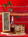 Aún-vida con una botella y una vid del brandy Fotos de archivo