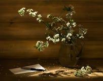 Aún-vida con una ramificación de la cereza Fotos de archivo libres de regalías