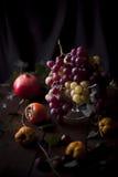 Aún vida conceptual con las uvas, el caqui y la granada Fotografía de archivo libre de regalías