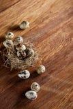 Aún-vida conceptual con los huevos de codornices en jerarquía del heno sobre fondo de madera oscuro, cierre para arriba, foco sel Imagen de archivo libre de regalías