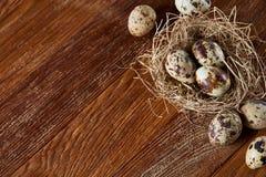 Aún-vida conceptual con los huevos de codornices en jerarquía del heno sobre fondo de madera oscuro, cierre para arriba, foco sel Foto de archivo libre de regalías