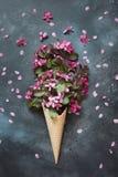 Aún vida creativa de la flor rosada de la primavera en cono de la galleta en la tabla del vintage Concepto del resorte Visión sup Fotos de archivo libres de regalías