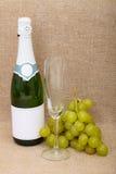 Aún-vida de la botella de vino y de uvas Imágenes de archivo libres de regalías