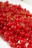 Aún-vida de la fruta. Imagen de archivo libre de regalías